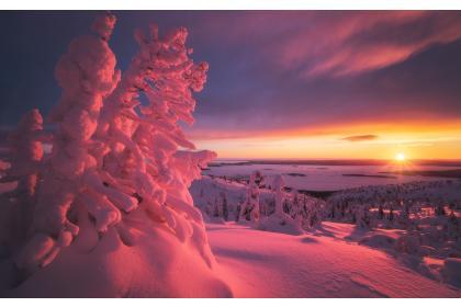 Снегоходный тур на полуострове Рыбачий. Снегоходное сафари (3 дня+ж/д)