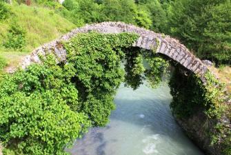 Восточная Абхазия (8 дней + авиа или ж/д )