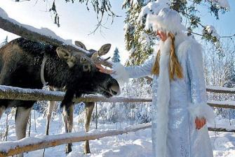 Новый Год в Костроме - «Шелестов 3*» (3 дня, автобусный тур)