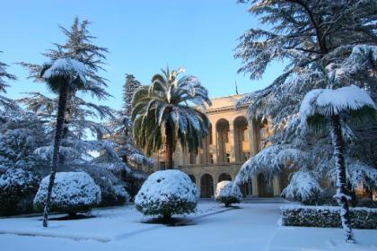 Абхазская рапсодия. Новый год и Рождество (4 дня + авиа или ж/д)
