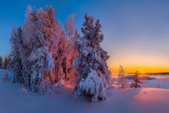 Отдохни в Карелии! (3 дня + ж/д, зима-весна)