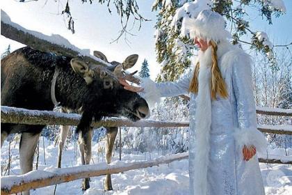 К истокам Древней Руси, Русская деревня-Баташев (3 дня, автобусный тур ), Новогодний заезд