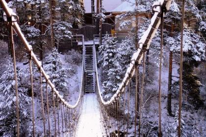 Здравствуй, зимний Алтай! (7 дней+авиа)