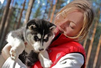 Веселые январские каникулы в Карелии (4 дня +ж/д). Выезд из Санкт-Петербурга