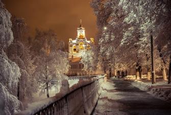 Новый Год в Ярославле г-ца Любим 3* (3 дня, автобусный тур)